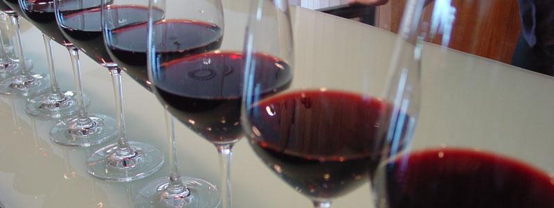 Suben las exportaciones de vino español a México, Brasil, Holanda y Bélgica