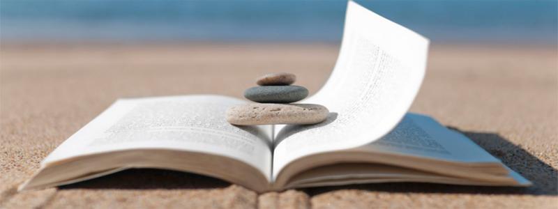 Cinco lecturas para el verano que pueden salvar tu pyme