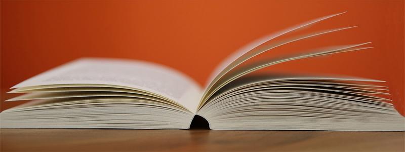 Los 5 libros que todo emprendedor debería leer este verano