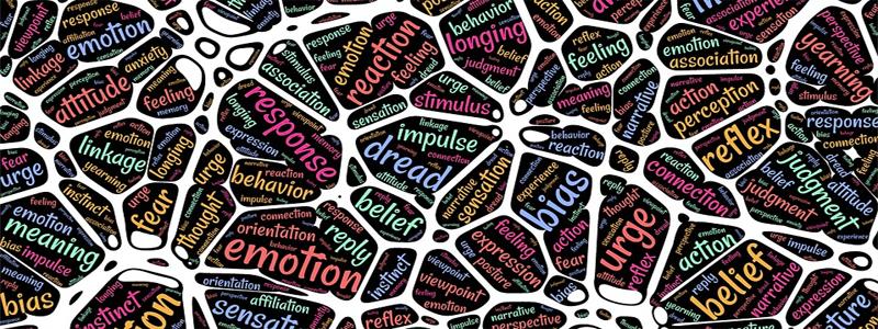 ¿Se puede usar el neuromarketing para definir las relaciones con el cliente?