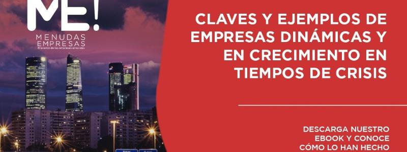 Ebook Menudas Empresas: Claves y ejemplos de empresas dinámicas y en crecimiento en tiempos de crisis